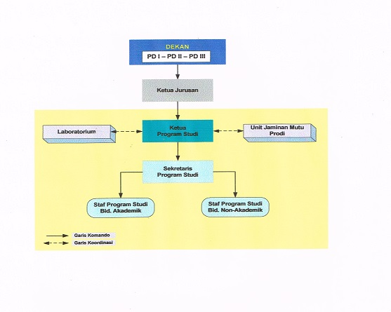 Organization Chart – Master's in Public Administration Program